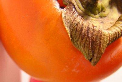 весна диеты продукты для снижения веса